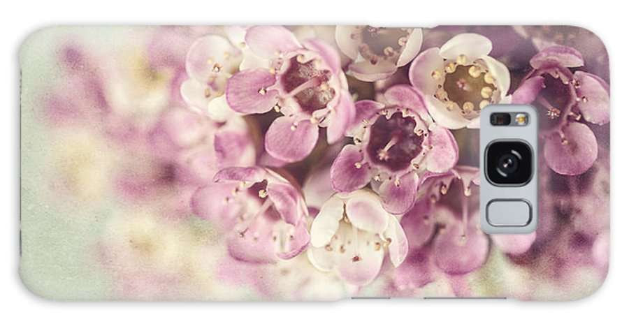 Flower Galaxy S8 Case featuring the photograph Pink Dream by Lisa Russo