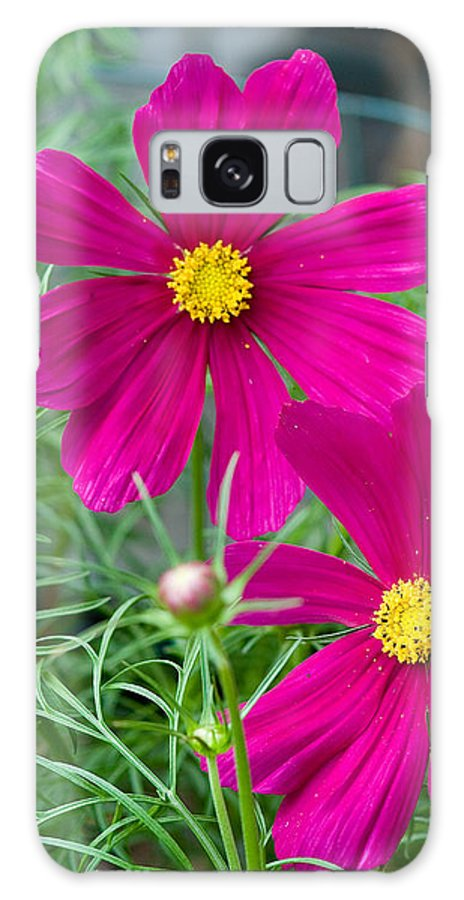 Pink Galaxy S8 Case featuring the photograph Pink Flower by Michael Bessler
