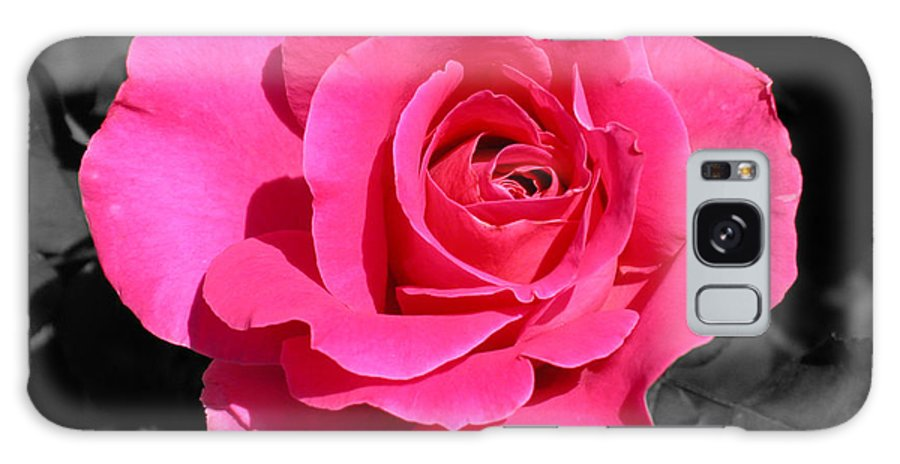 Pink Galaxy S8 Case featuring the photograph Perfect Pink Rose by Michael Bessler