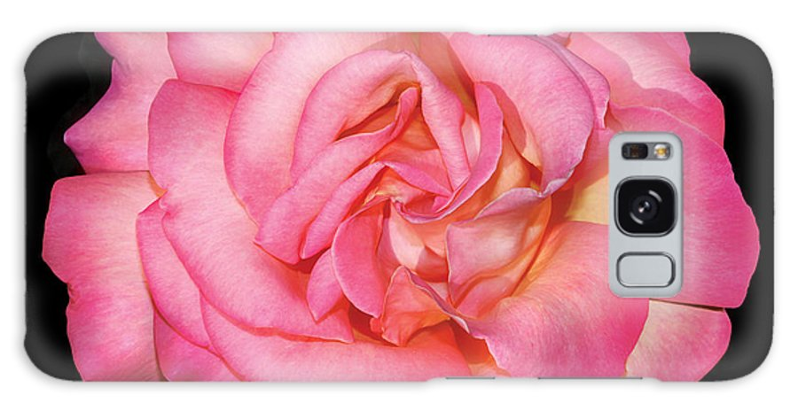 Galaxy S8 Case featuring the photograph Pink Rose by Peter Arnold