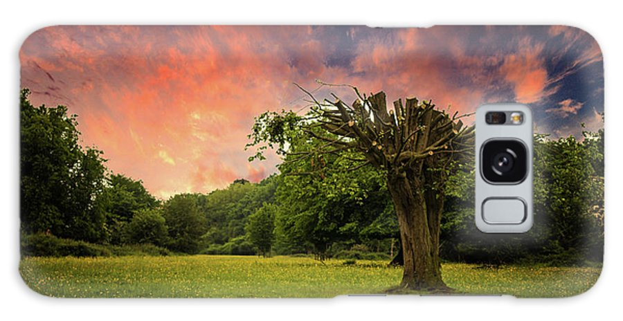 Countryside Galaxy S8 Case featuring the photograph Pink Sky At Night by Martin Newman
