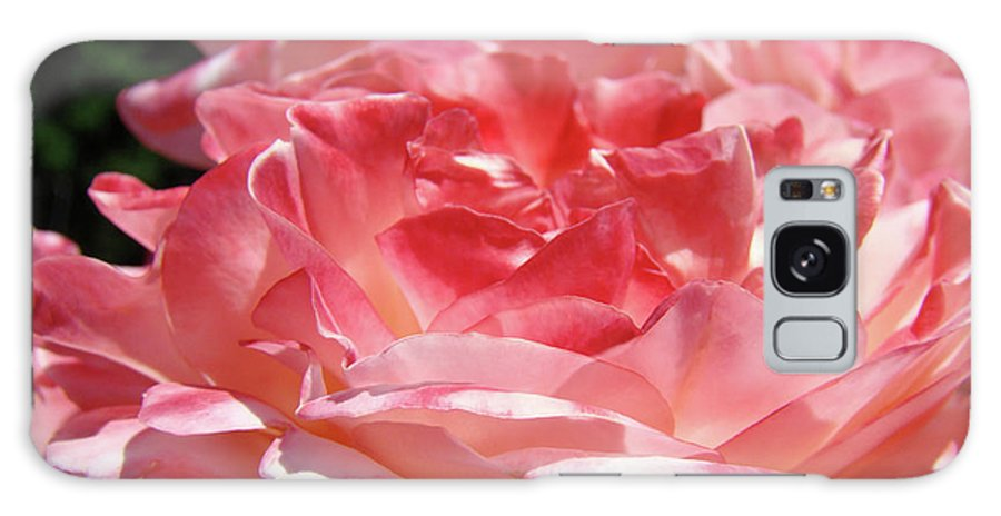 Rose Galaxy S8 Case featuring the photograph Pink White Roses Floral Art Prints Rose Baslee Troutman by Baslee Troutman
