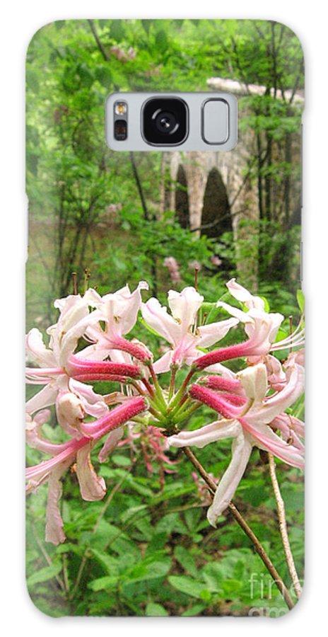 Pennsylvania Galaxy Case featuring the photograph Pinxterbloom Azalea At Bowmans Hill by Anna Lisa Yoder