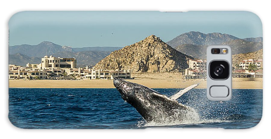 Frankie Grant Photography Galaxy S8 Case featuring the photograph Playa Grande - Cabo San Lucas by Frankie Grant