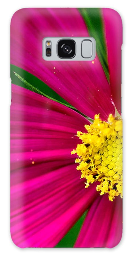 Plink Galaxy S8 Case featuring the photograph Plink Flower Closeup by Michael Bessler