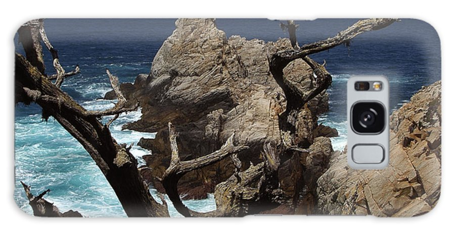 Carmel Galaxy Case featuring the photograph Point Lobos Rocks And Branches by Charlene Mitchell