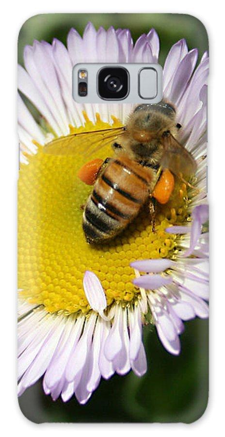 Pollen Harvest Galaxy S8 Case featuring the photograph Pollen Harvest by Ellen Henneke