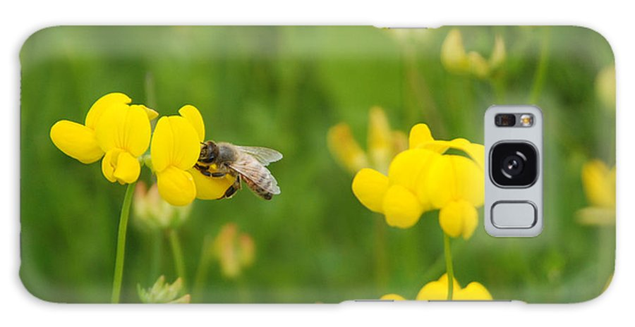 Bee Galaxy S8 Case featuring the photograph Pollination by Margaret Fortunato
