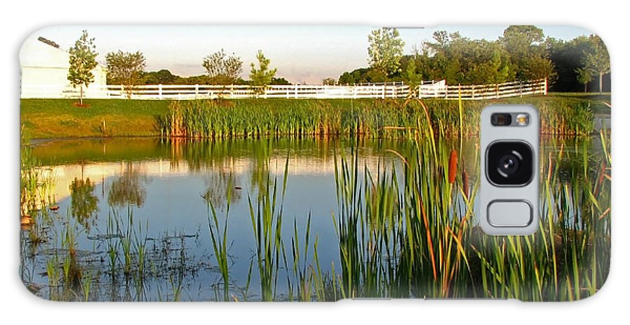 Landscape Galaxy S8 Case featuring the photograph Pond At Sunset by Todd Blanchard