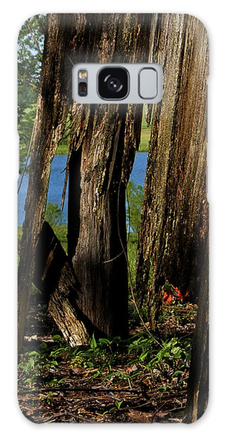 Landscape Galaxy S8 Case featuring the photograph Pond Fragments by Rachel Christine Nowicki