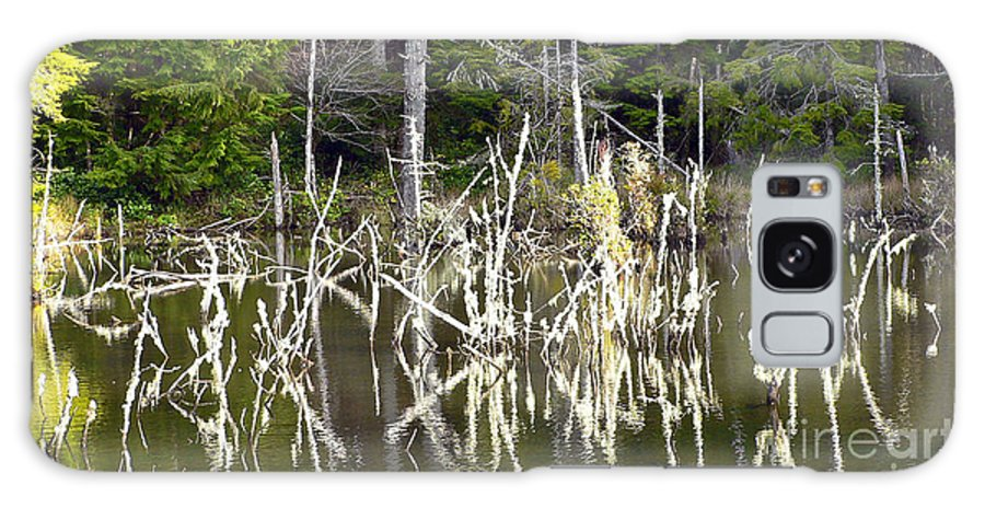 Water Galaxy Case featuring the photograph Pond Sticks by Larry Keahey