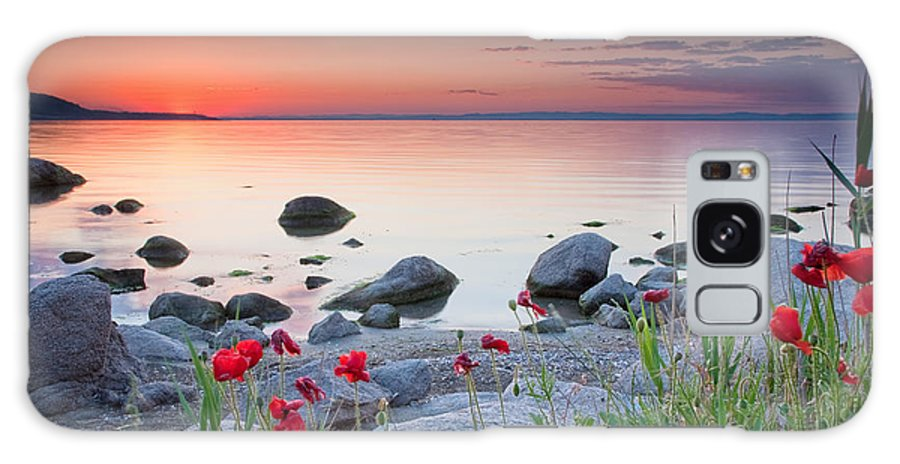 Sea Galaxy S8 Case featuring the photograph Poppies By The Sea by Evgeni Dinev