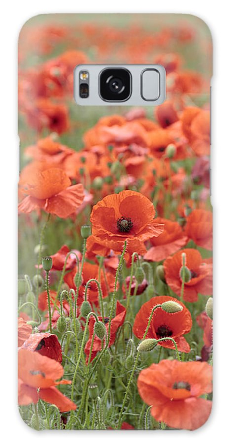 Poppy Galaxy S8 Case featuring the photograph Poppies by Phil Crean