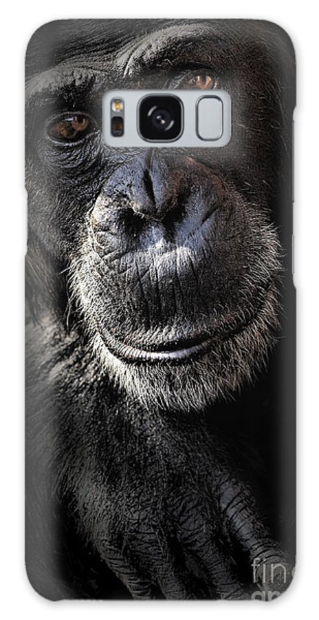 Chimp Galaxy S8 Case featuring the photograph Portrait Of A Chimpanzee by Sheila Smart Fine Art Photography