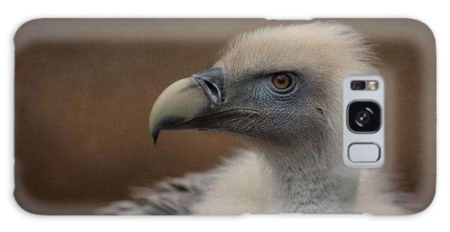 Griffon Vulture Galaxy S8 Case featuring the photograph Portrait Of A Griffon Vulture by Eva Lechner