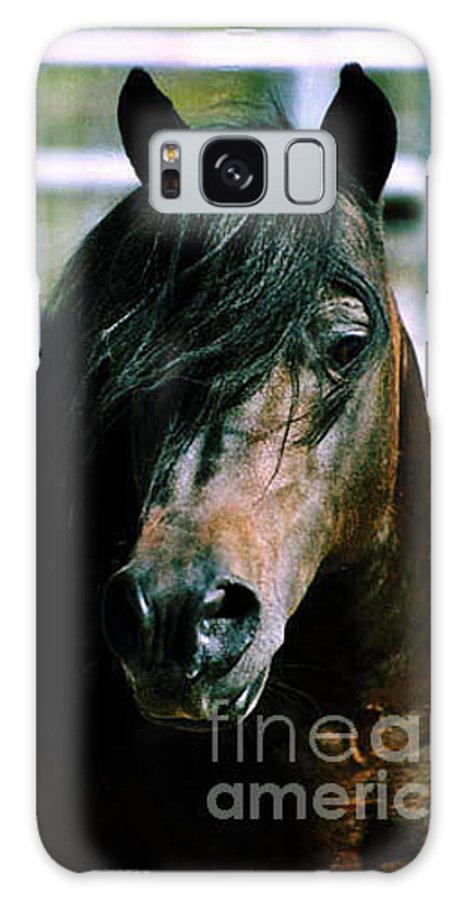 Horse Galaxy S8 Case featuring the photograph Portrait Of His Majesty - The King by Kathy McClure