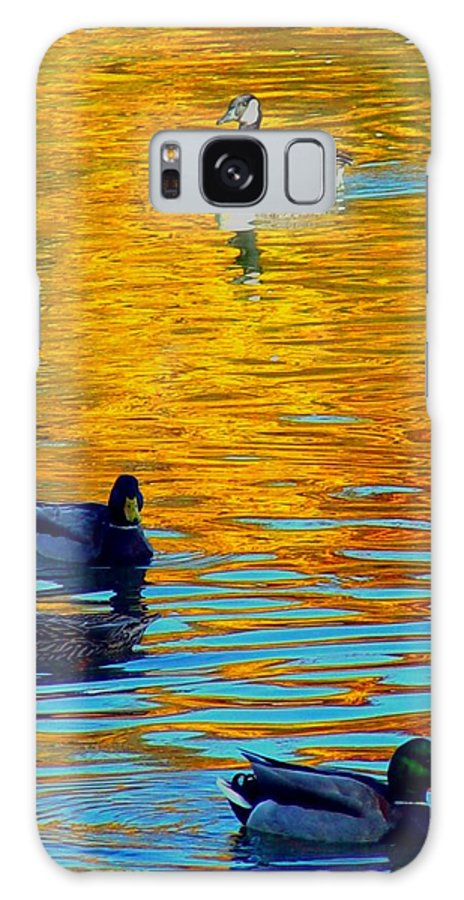 Ducks Malard Lake Gold Canada Geese Blue Galaxy S8 Case featuring the photograph Possibilities by Jack Diamond