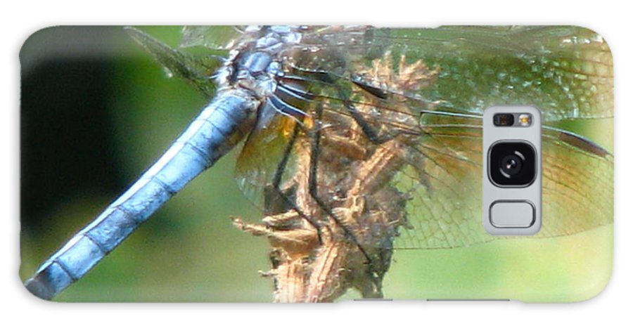 Dragonfly Galaxy S8 Case featuring the photograph Power Blue by Paul Slebodnick