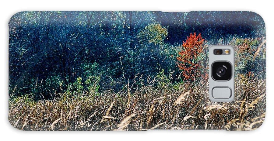 Landscape Galaxy Case featuring the photograph Prairie Edge by Steve Karol