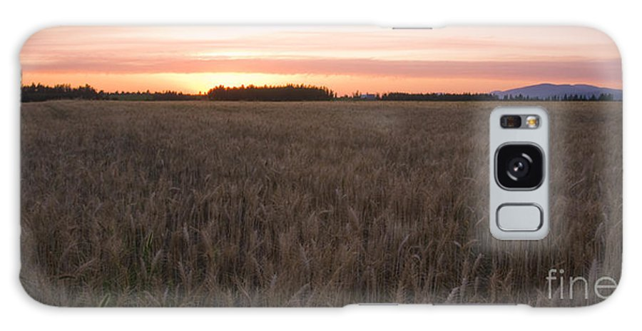 Fields Galaxy S8 Case featuring the photograph Prairie Pink by Idaho Scenic Images Linda Lantzy