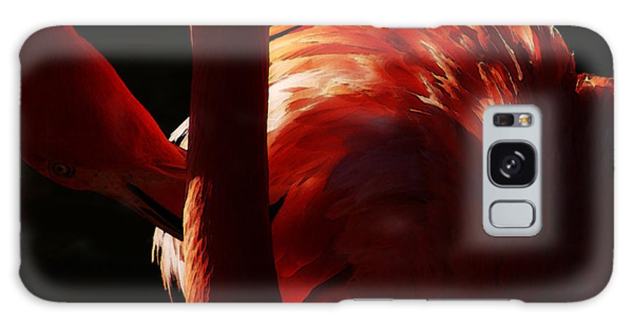 Flamingo Galaxy S8 Case featuring the photograph Preen by Linda Shafer