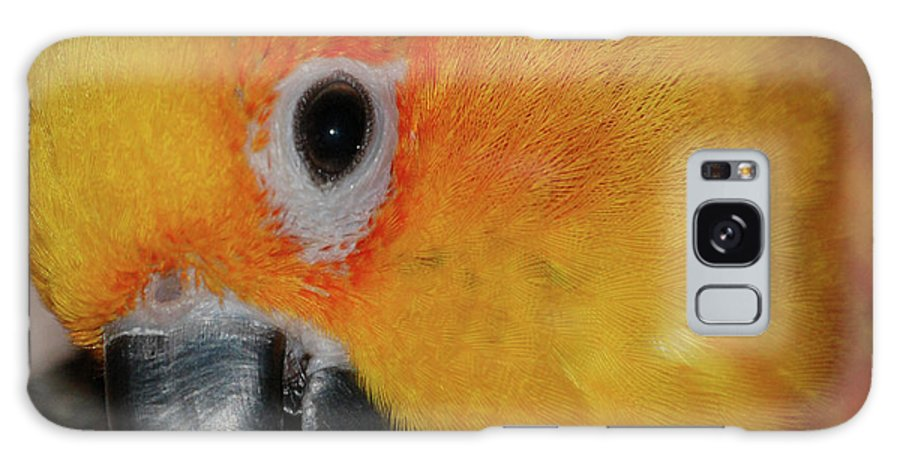 Bird Galaxy S8 Case featuring the digital art Pretty Girl by DigiArt Diaries by Vicky B Fuller