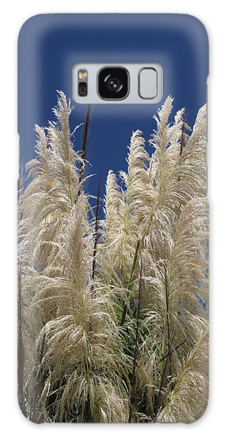Landscape Galaxy S8 Case featuring the photograph Pretty Pampas by Cheryl Kostanesky