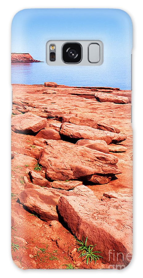 Prince Edward Island National Park Galaxy S8 Case featuring the photograph Prince Edward Island National Park by Thomas R Fletcher