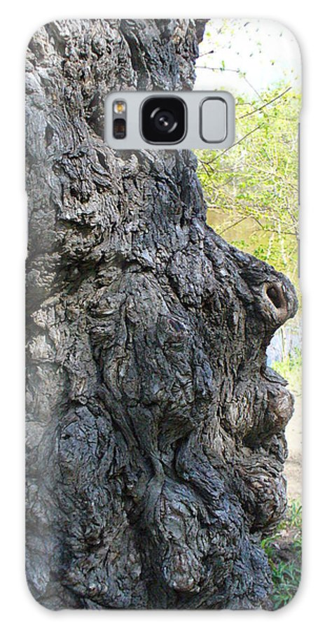 Tree Galaxy S8 Case featuring the photograph Profile Of An Ancient Willow by Peggy King