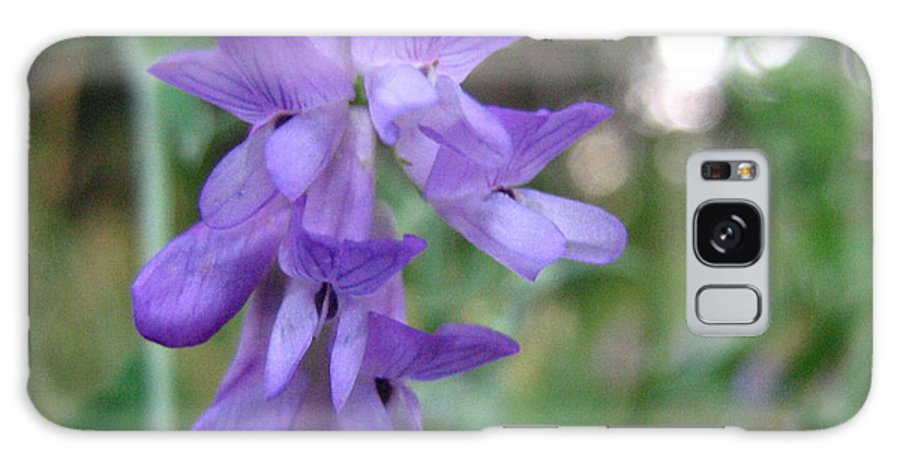 Purple Galaxy Case featuring the photograph Purple Beauty by Melissa Parks