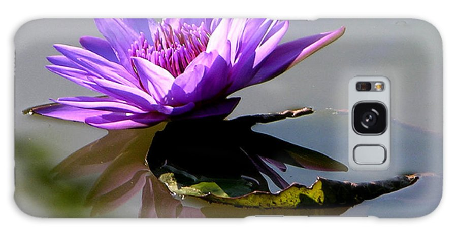 Water Lily Galaxy S8 Case featuring the photograph Purple Beauty On The Pond by John Lautermilch