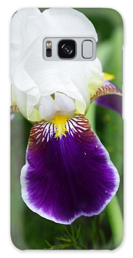Flower Galaxy S8 Case featuring the photograph Purple Beauty by Paul Slebodnick