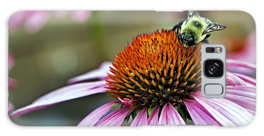 Macro Galaxy Case featuring the photograph Purple Cone Flower And Bee by Al Mueller
