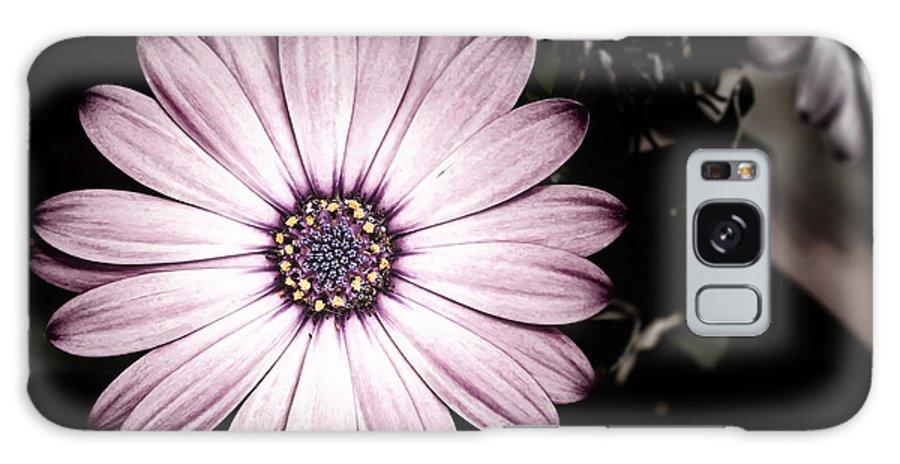 Flower Galaxy S8 Case featuring the photograph Purple Flower by Al Mueller