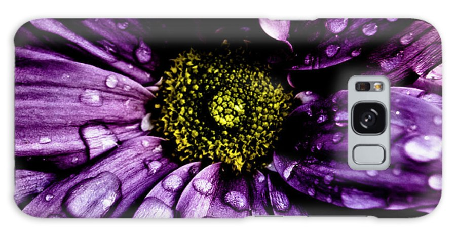 Flower Galaxy S8 Case featuring the photograph Purple Flower II by Grebo Gray