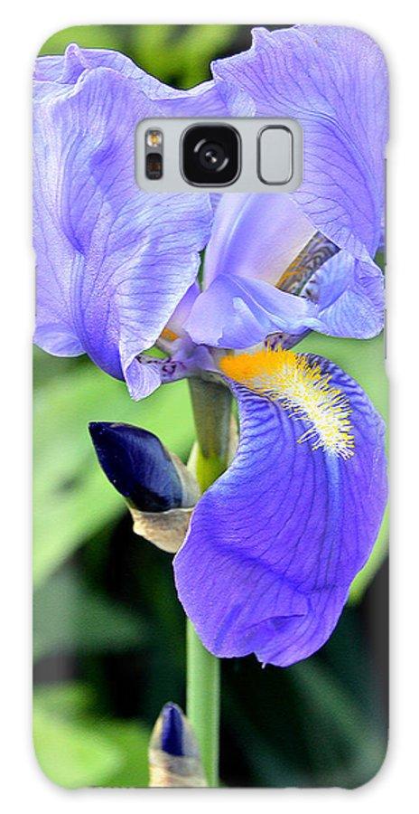 Iris Galaxy S8 Case featuring the photograph Purple Iris by Jennifer Aiken