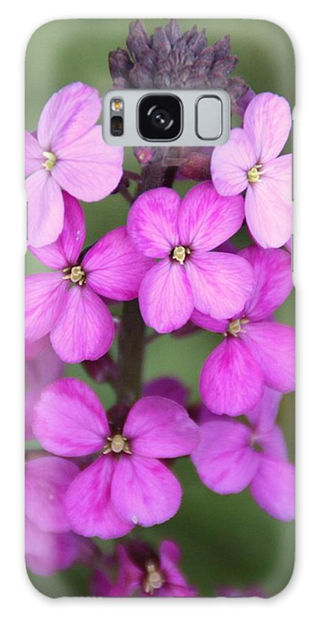 Flower Galaxy S8 Case featuring the photograph Purple Pink Flower.... by Martina Fagan