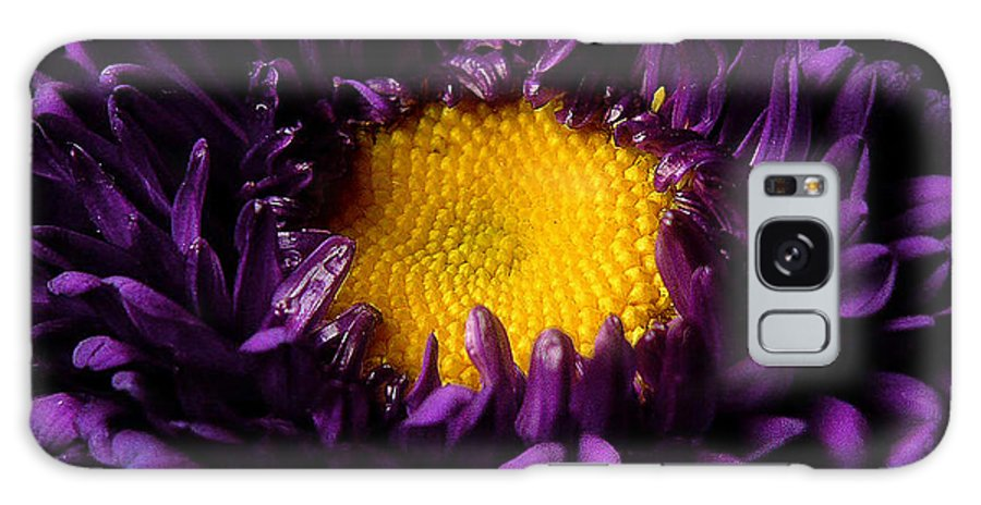 Nature Galaxy S8 Case featuring the photograph Purples - Zooming To The Center by Lucyna A M Green