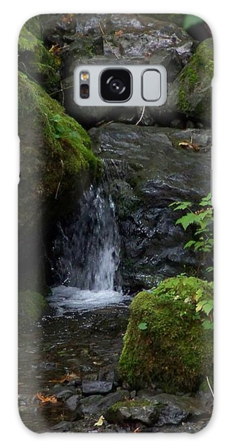 Digital Photography Galaxy S8 Case featuring the photograph Quinault Washington Rain Forest by Laurie Kidd