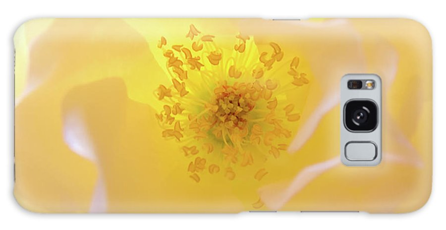 Flower Galaxy Case featuring the photograph Radiant Gift by Julia Hiebaum