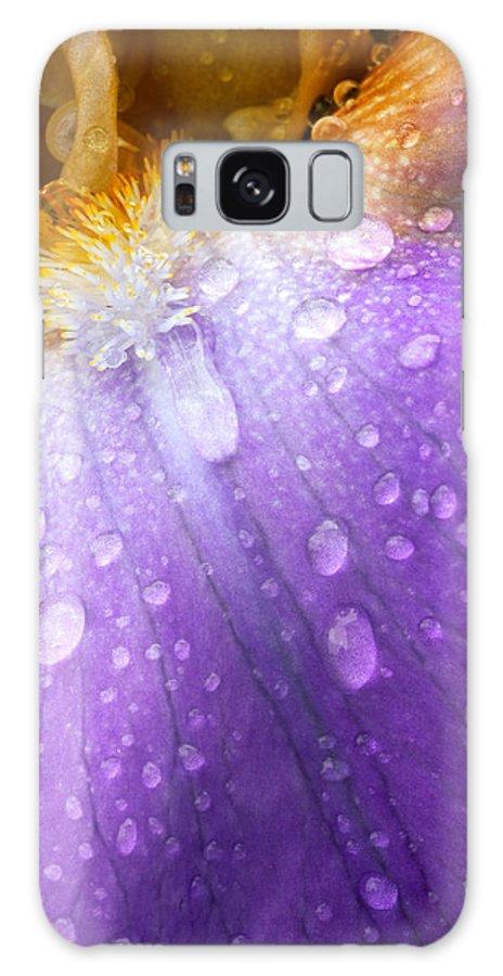 Iris Galaxy S8 Case featuring the photograph Rain Covered Iris by Amanda Kiplinger