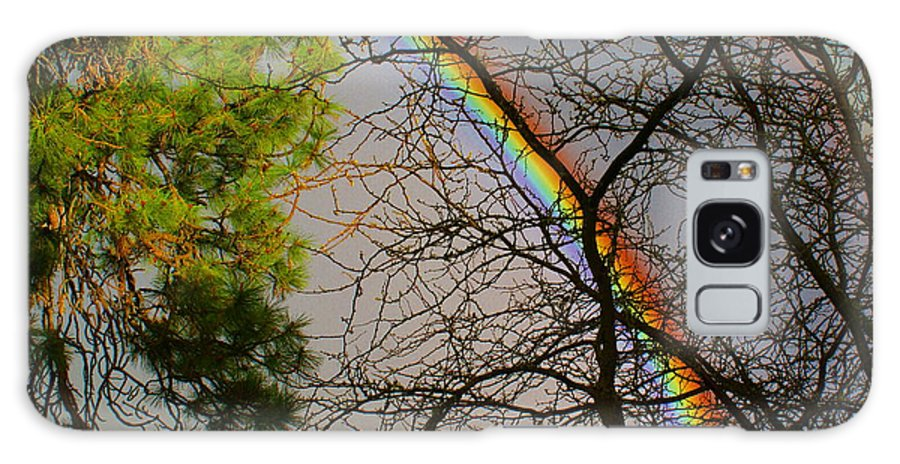 Nature Galaxy S8 Case featuring the photograph Rainbow Tree by Ben Upham III