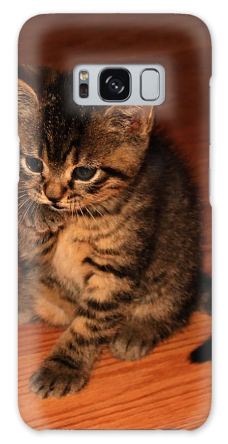 Animals Galaxy S8 Case featuring the photograph Ralphie Bathing 1 by Robert Morin