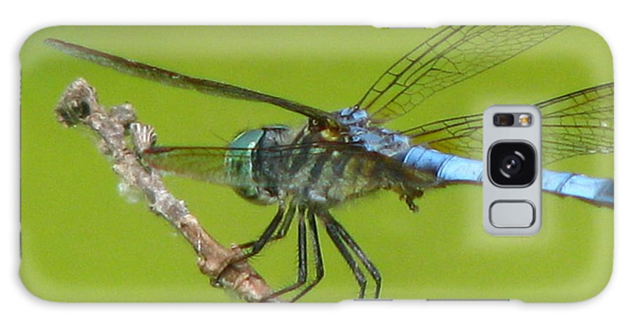 Dragonfly Galaxy S8 Case featuring the photograph Ready To Fly by Paul Slebodnick