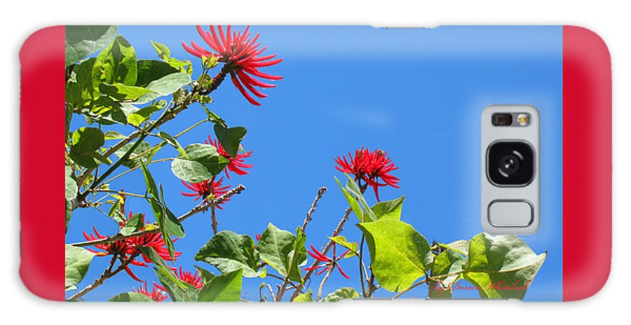 Red Flowers Galaxy S8 Case featuring the photograph Red And Green San Diego Flowers by Doreen Whitelock