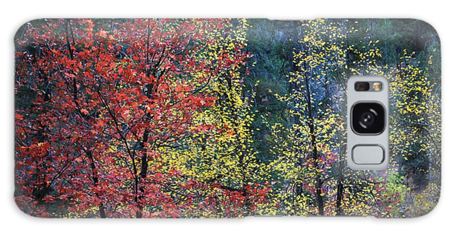 Landscape Galaxy S8 Case featuring the photograph Red And Yellow Leaves Abstract Horizontal Number 1 by Heather Kirk