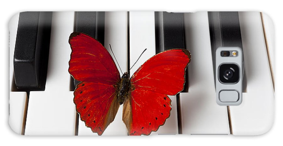 Red Butterfly Galaxy S8 Case featuring the photograph Red Butterfly On Piano Keys by Garry Gay