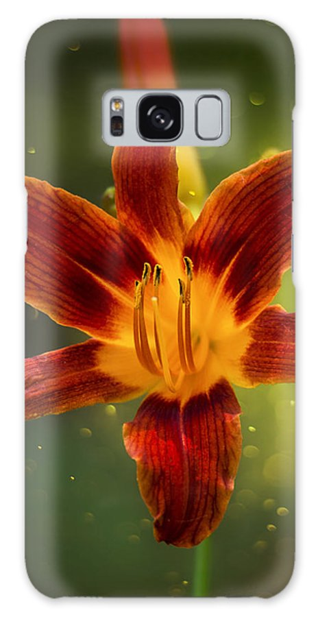 Flower Galaxy S8 Case featuring the photograph Red Daylily by Bill Tiepelman