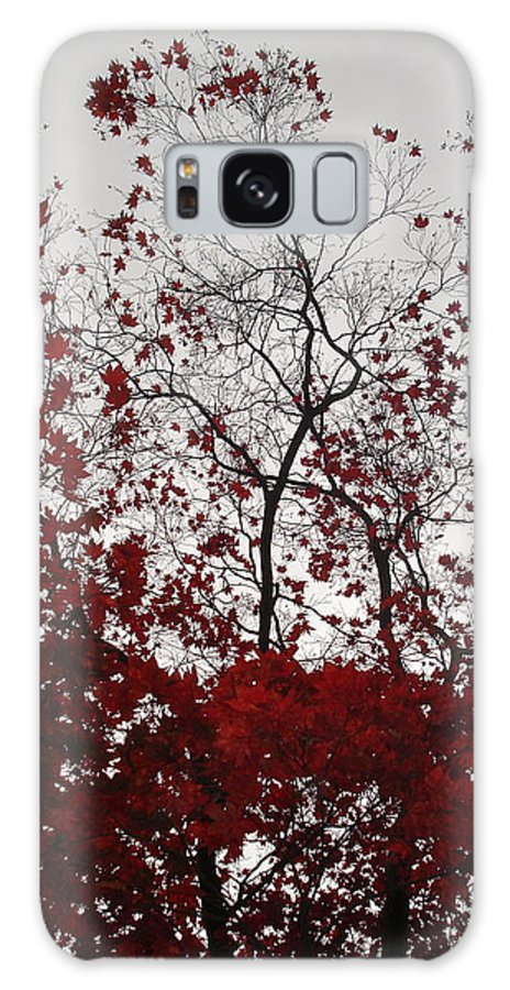 Nature Galaxy S8 Case featuring the photograph Red Glitter by Nelson F Martinez