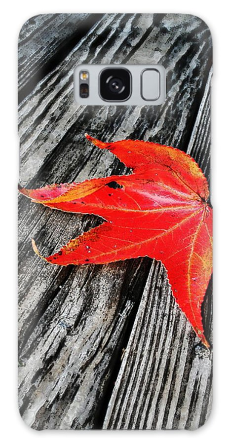 Nature Galaxy S8 Case featuring the photograph Red Leaf by Linda Sannuti